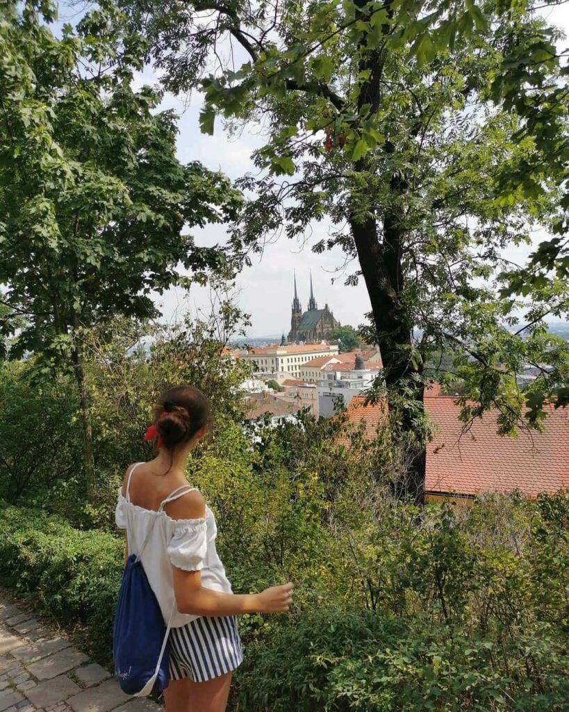 Brno widok na katedrę