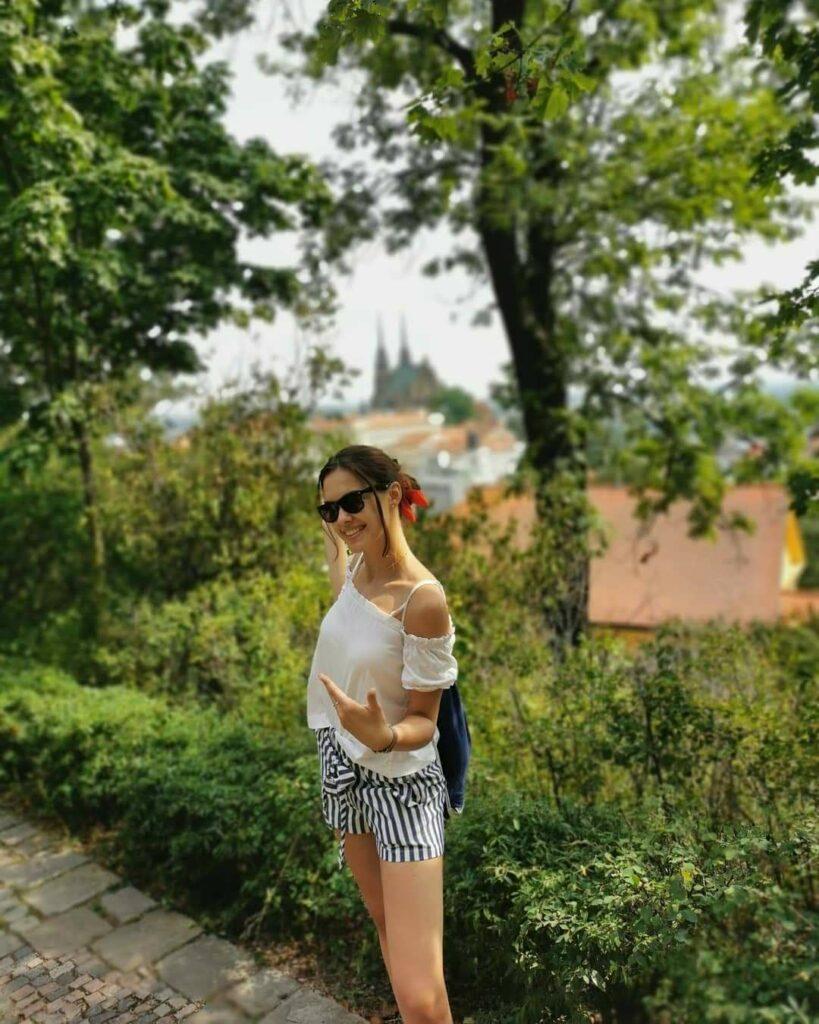 Brno widok